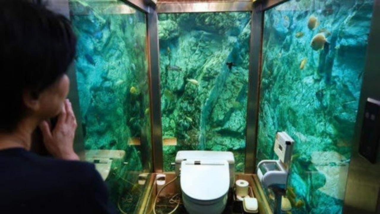 bizarre bathrooms