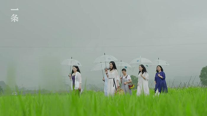 Seven girlfriends live together